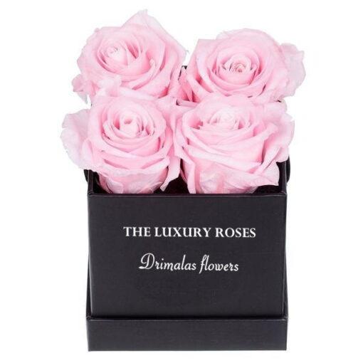 λουλούδια σέ κουτιά -flowers box,. Αποστολή λουλουδιών,online ανθοπωλείο