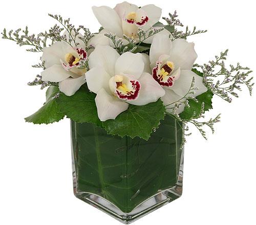 αποστολή λουλουδιών στην ελλάδα, αποστολή λουλουδιών στην αθήνα, online ανθοπωλείο