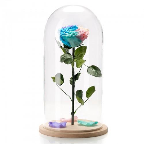 Τριανταφυλλα που ζουν για παντα skroutz, τριανταφυλλο που διαρκει για παντα, τριανταφυλλο σε γυαλα τιμη