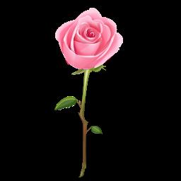 Ανθοσυνθέσεις λουλουδιών